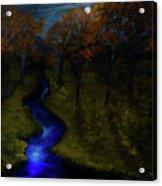 Midnight Forest Acrylic Print