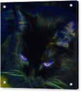 Midnight Glow Acrylic Print