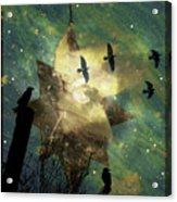 Midnight Magic Acrylic Print