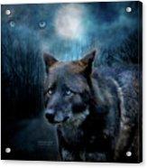 Midnight Spirit Acrylic Print