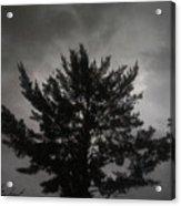 Midnight Storm Acrylic Print