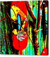 Mike's Art Fence 128 Acrylic Print