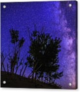 Milky Way And Silhouette Trees At Bruneau Dunes State Park Idaho Acrylic Print