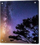 Milky Way In Newport, Or Acrylic Print