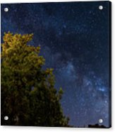 Milky Way Over The Forest At The Troodos Mountains In Cyprus. Acrylic Print