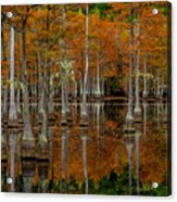 Mill Pond Reflections Acrylic Print