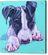 Millie Acrylic Print