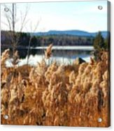 Millinocket Lake Acrylic Print