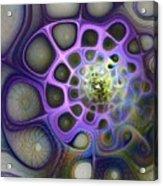 Mindscapes Acrylic Print