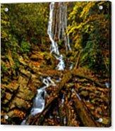 Mingus Falls Acrylic Print