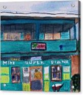 Mini Super Diana Acrylic Print
