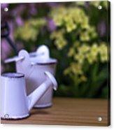 Miniature Gardening Kit With Pink And Yellow Kalanchoe Backgroun Acrylic Print