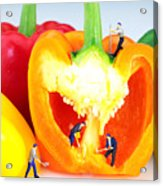 Mining In Colorful Peppers Acrylic Print by Paul Ge