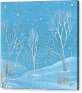 Minnesota Winter... No. Two Acrylic Print by Robert Meszaros