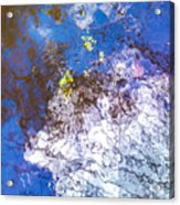 Mirror The Sky Acrylic Print