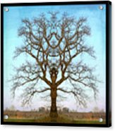 Mirror Tree Acrylic Print