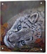 Mirucha In Fall Acrylic Print