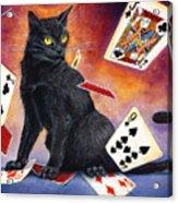 Mischief Kitten Acrylic Print