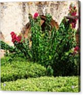Mission San Jose' Flora Beauty Acrylic Print