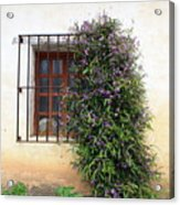 Mission Window With Purple Flowers Acrylic Print