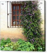 Mission Window With Purple Flowers Vertical Acrylic Print