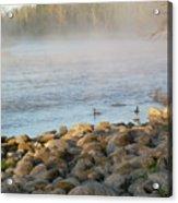 Mississippi River Duck Duck Dawn Acrylic Print
