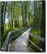 Mississippi Riverwalk Trail - Carleton Place, Ontario Acrylic Print