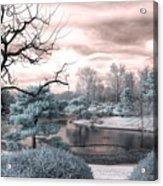 Missouri Botanical Garden Infrared Pond Blue Acrylic Print
