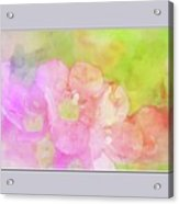 Missouri Wildflowers 5  - Polemonium Reptans -  Digital Paint 8 Acrylic Print