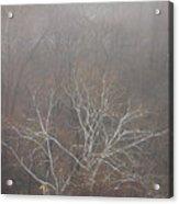 Mist Over The Hudson Acrylic Print