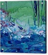 Mistery Pond Acrylic Print