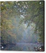 Misty Creek Acrylic Print