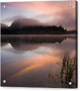 Misty Dawn Acrylic Print