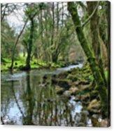 Misty Day On River Teign - P4a16017 Acrylic Print