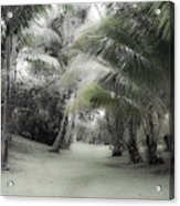 Misty Hawaiian Garden Acrylic Print