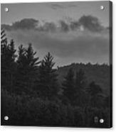 Misty Maine Woods Black And White 2 Acrylic Print