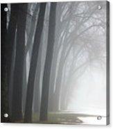 Misty Moments Acrylic Print