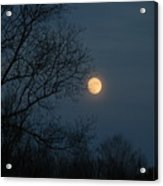 Misty Moonrise Acrylic Print