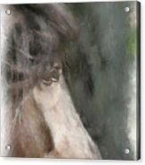 Misty Morn Acrylic Print