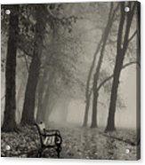 Misty Morning Acrylic Print