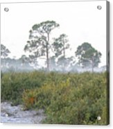 Misty Morning On The Trail Acrylic Print