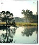 Misty Morning Pond Acrylic Print
