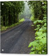 Misty Mountain Road Acrylic Print