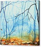 Misty November Woods Acrylic Print