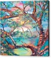 Misty Oak Acrylic Print