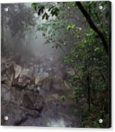 Misty Rainforest El Yunque Mirror Image Acrylic Print