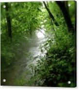 Misty Stream Acrylic Print by Tina Valvano