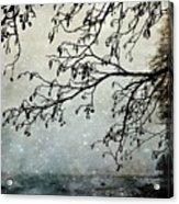 Misty Tide Acrylic Print
