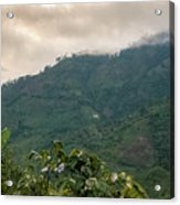 Misty Valley Near Cajamarca Colombia Acrylic Print