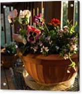 Mixed Basket, Balcony Garden, Hunter Hill, Hagerstown, Maryland, Acrylic Print